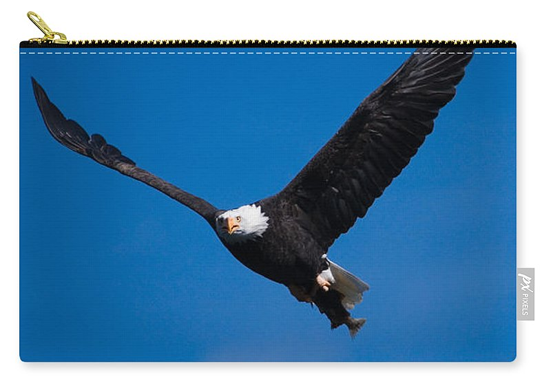Bald Eagle Carry-all Pouch featuring the photograph V For Victory by Randall Ingalls
