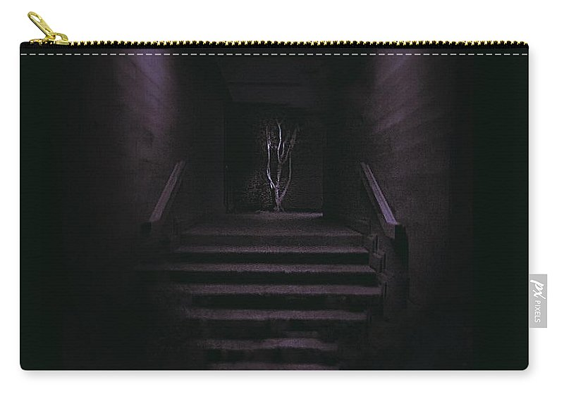 Carry-all Pouch featuring the photograph V3 by Lisa Anne Warren
