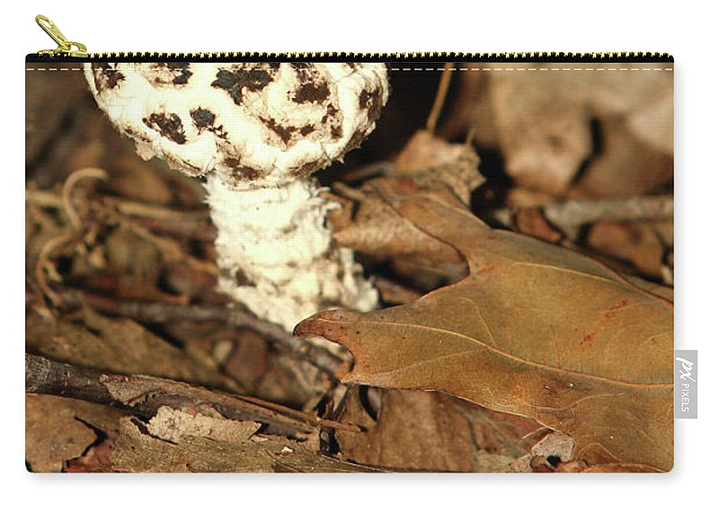 Vacation Carry-all Pouch featuring the photograph Varigated Mushroom by Alan Look