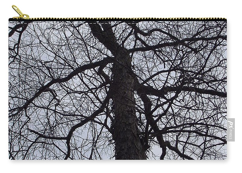 Hickory Carry-all Pouch featuring the photograph Veins And Vessels by Deborah Crew-Johnson