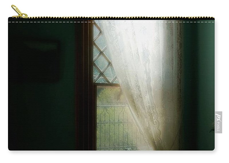 Antiques Carry-all Pouch featuring the painting Velvet Afternoon by RC DeWinter