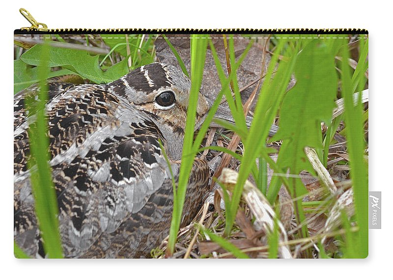 American Woodcock Carry-all Pouch featuring the photograph Velvet Eyes, Woodcock Eyes by Asbed Iskedjian