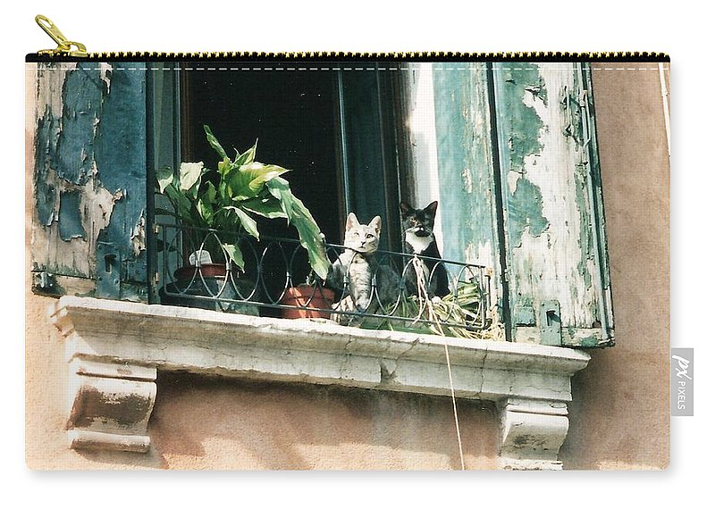 Venice Carry-all Pouch featuring the photograph Venetian Cats by Lauri Novak