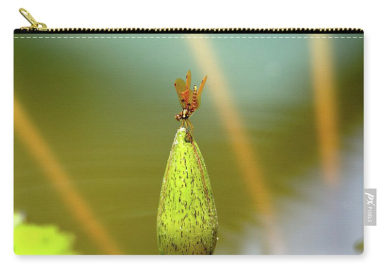 Roy Williams Carry-all Pouch featuring the photograph Very Small Dragonfly In Vertical Position by Roy Williams