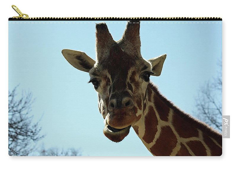 Maryland Carry-all Pouch featuring the photograph Very Tall Giraffe by Ronald Reid