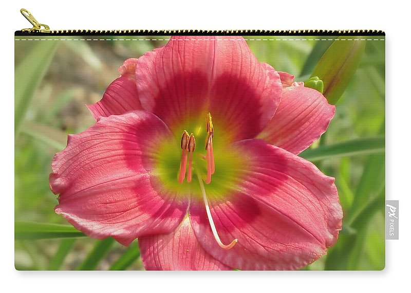 Victoria Grace Daylily Carry-all Pouch featuring the photograph Victoria Grace Daylily by MTBobbins Photography