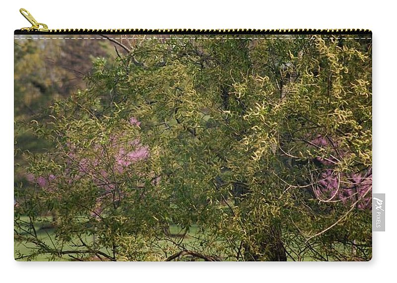 Landscape Carry-all Pouch featuring the photograph View Out My Office Window. by David Lane