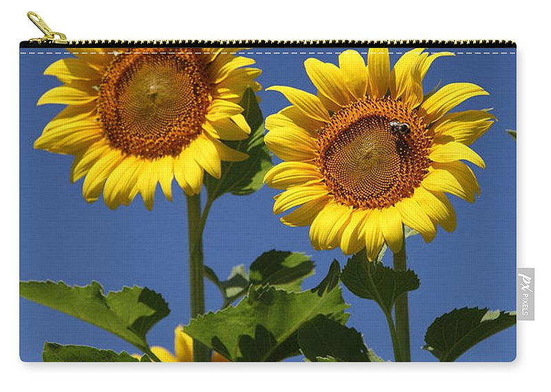 Sunflower Carry-all Pouch featuring the photograph Viewing The Past by Amanda Barcon