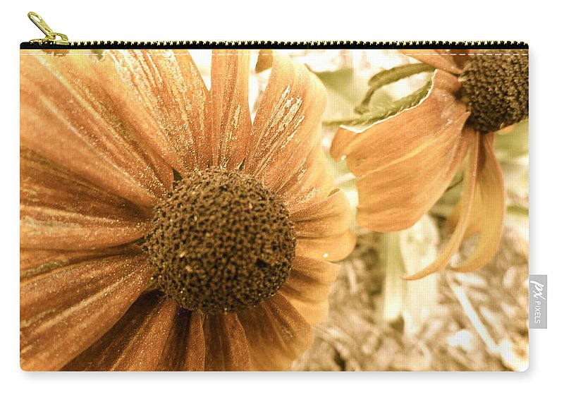 Flowers Carry-all Pouch featuring the photograph Vintage Black Eyed Susan by Trish Hale