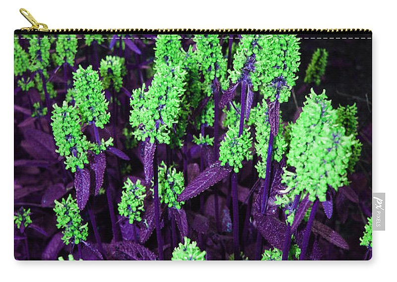 Carry-all Pouch featuring the photograph Violet Dream On Green by Jamie Lynn