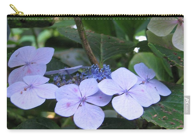Violets Carry-all Pouch featuring the photograph Violets O The Green by Kelly Mezzapelle