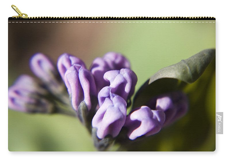 Virginia Carry-all Pouch featuring the photograph Virginia Bluebell Buds by Teresa Mucha