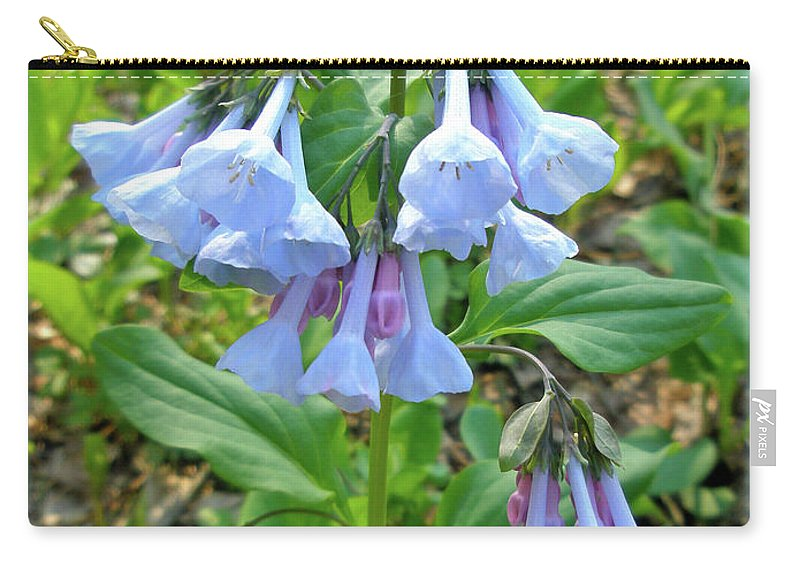 Bluebells Carry-all Pouch featuring the photograph Virginia Bluebells - Mertensia Virginica by Mother Nature