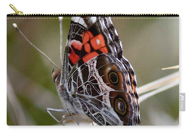 Butterfly Carry-all Pouch featuring the photograph Virginia Lady Butterfly Side View by Carol Groenen