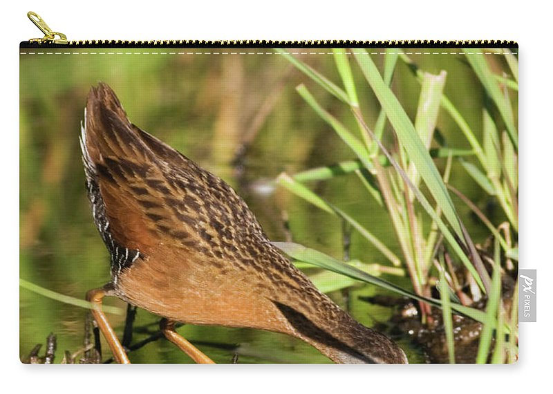 Virginia Rail Carry-all Pouch featuring the photograph Virginia Rail by Randall Ingalls
