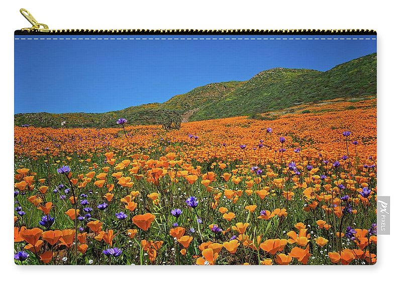 Superbloom 2017 Carry-all Pouch featuring the photograph Vivid Memories Of The Walker Canyon Superbloom by Lynn Bauer