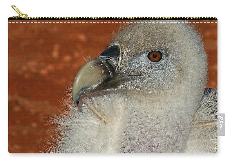 Vultures Carry-all Pouch featuring the photograph Vulture Portrait by Ernie Echols