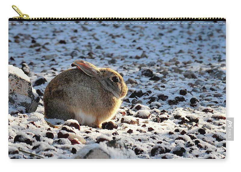 Animal Carry-all Pouch featuring the photograph Wabbit by David Arment