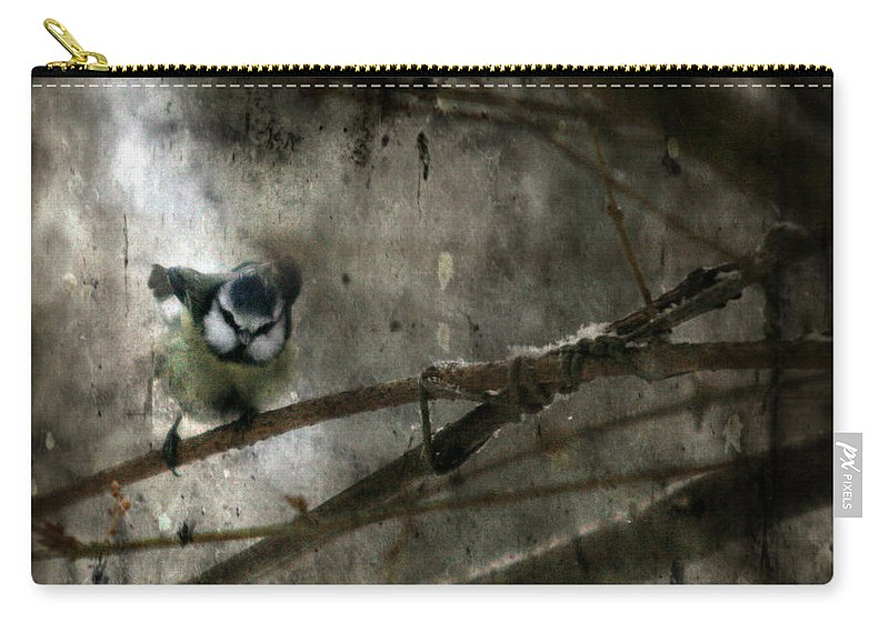 Blue Tit Carry-all Pouch featuring the photograph Waiting For Spring by Angel Ciesniarska