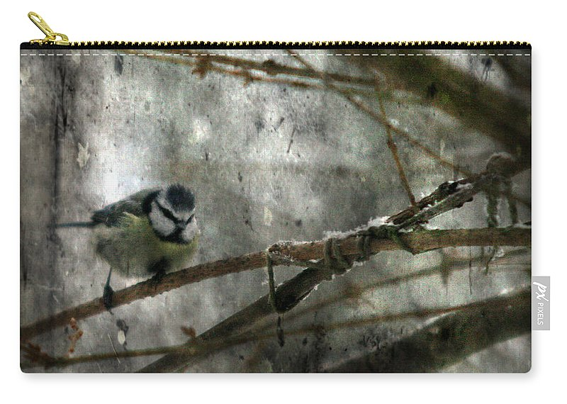 Blue Tit Carry-all Pouch featuring the photograph Waiting For Springtime by Angel Tarantella