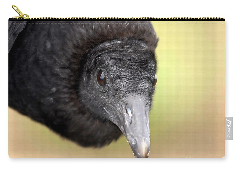 Black Vulture Carry-all Pouch featuring the photograph Waiting For You by David Lee Thompson