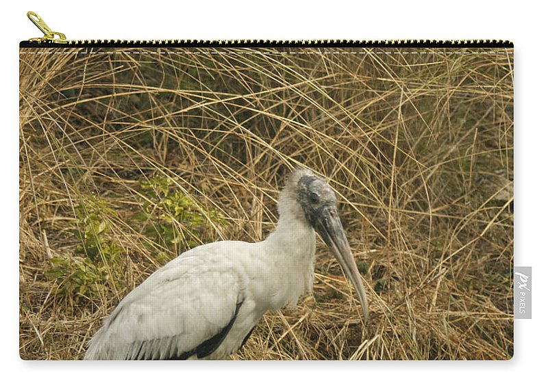 Bird Carry-all Pouch featuring the photograph Waiting by Phill Doherty