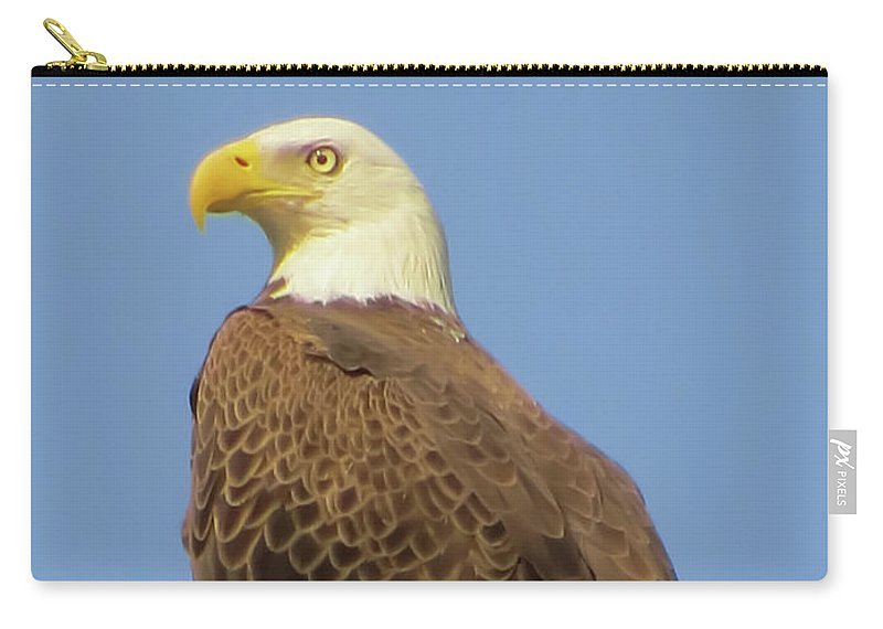 Bald Eagle Carry-all Pouch featuring the photograph Waiting by Zina Stromberg
