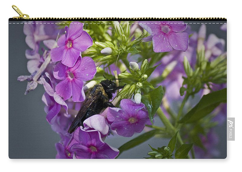 Bumblebee Carry-all Pouch featuring the photograph Wake Up Sleepyhead by Teresa Mucha
