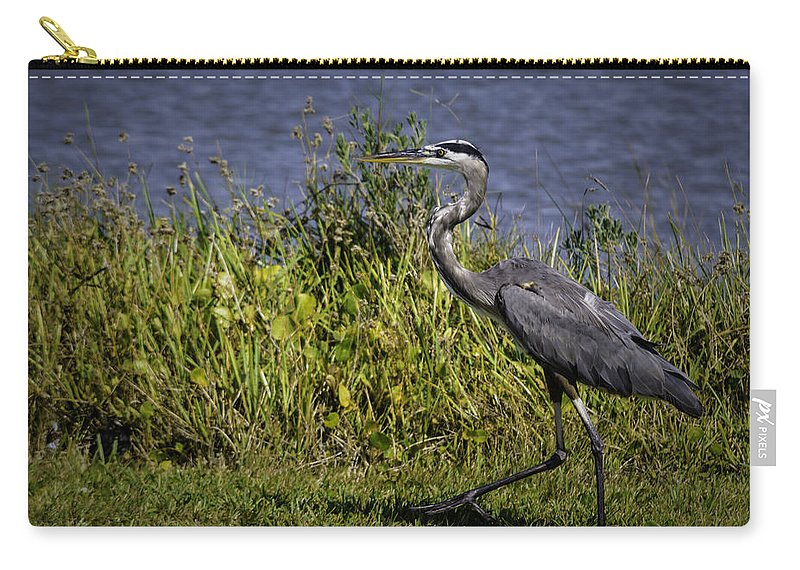 Bird Carry-all Pouch featuring the photograph Walking Away by Leticia Latocki
