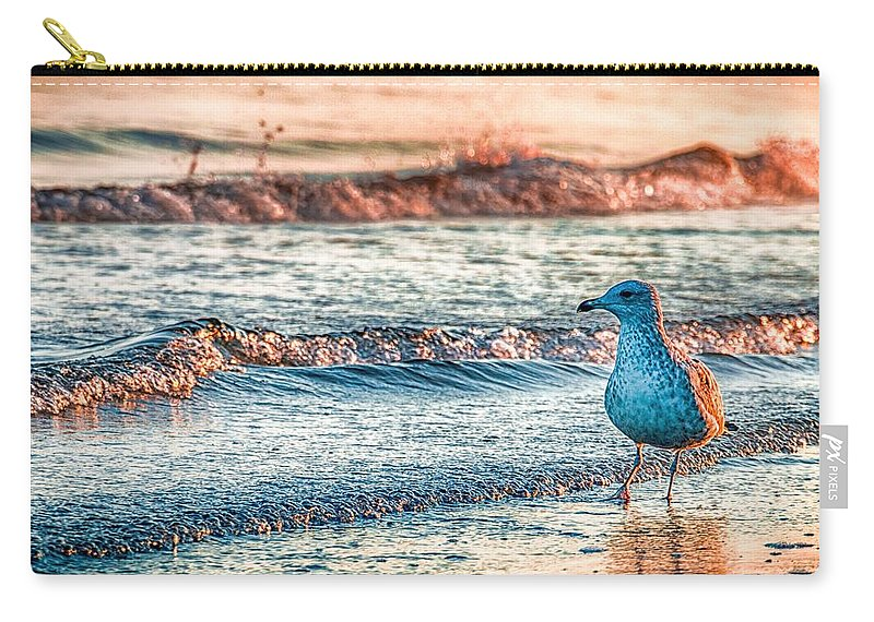 Ocean Carry-all Pouch featuring the photograph Walking On Sunshine by Mathias Janke