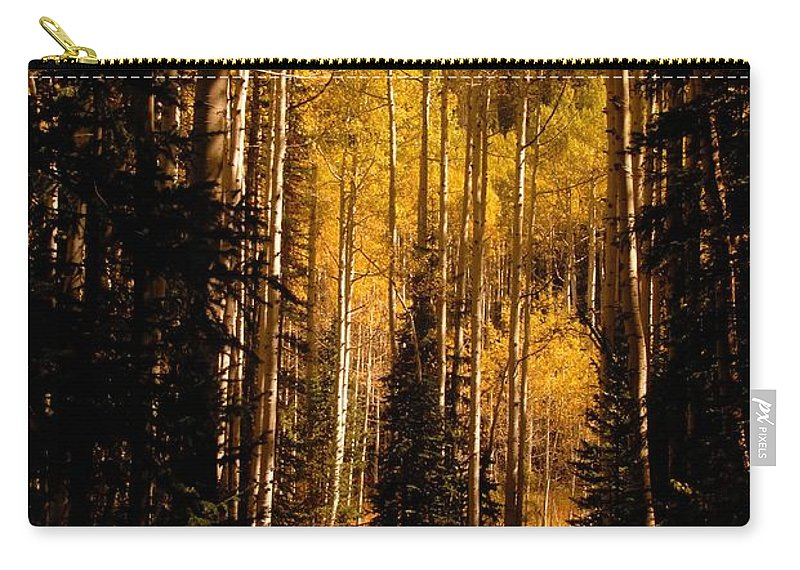 Landscape Carry-all Pouch featuring the photograph Walking With Aspens by David Lee Thompson