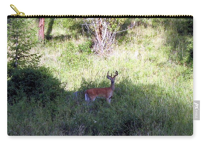 Deer Carry-all Pouch featuring the photograph Watchful by Will Borden