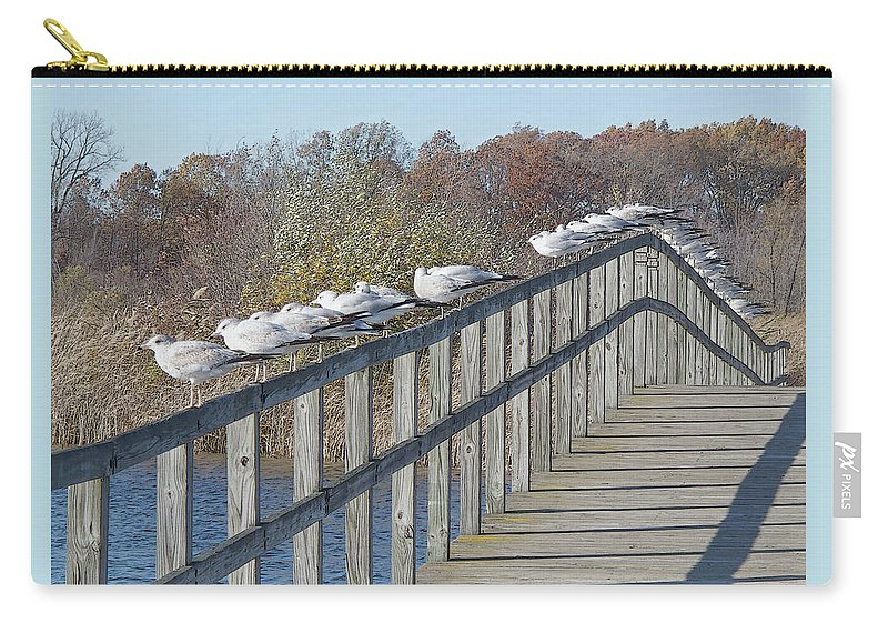 Seagulls Carry-all Pouch featuring the photograph Watching Autumn End by Ann Horn