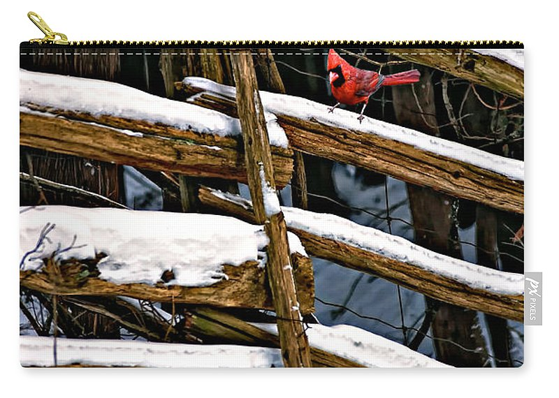 Winter Carry-all Pouch featuring the photograph Watching You by Steve Harrington