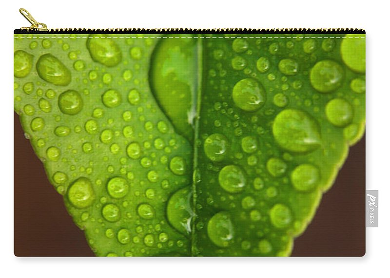 Leaf Carry-all Pouch featuring the photograph Water Droplets On Lemon Leaf by Ralph A Ledergerber-Photography