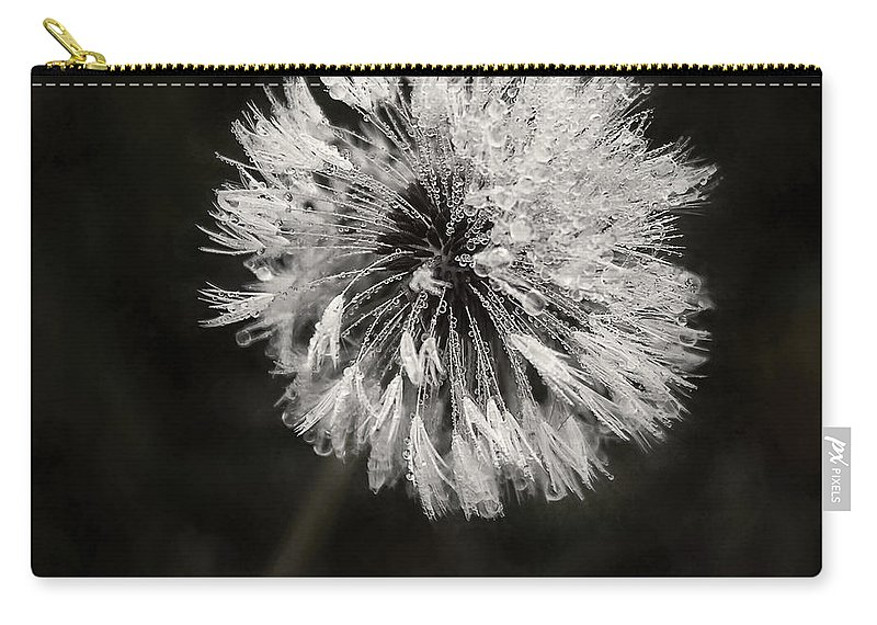 Dandelion Flower Carry-all Pouch featuring the photograph Water Drops On Dandelion Flower by Scott Norris