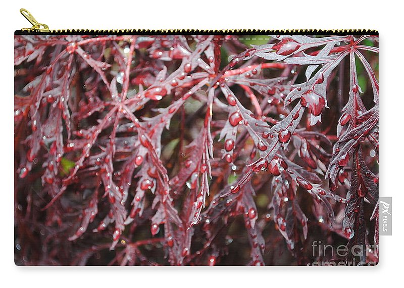 Floral Carry-all Pouch featuring the photograph Water Leaf by Jost Houk