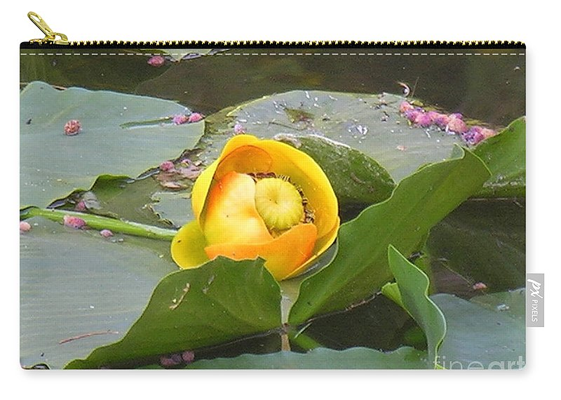 Water Carry-all Pouch featuring the photograph Water Lilly by Diane Greco-Lesser