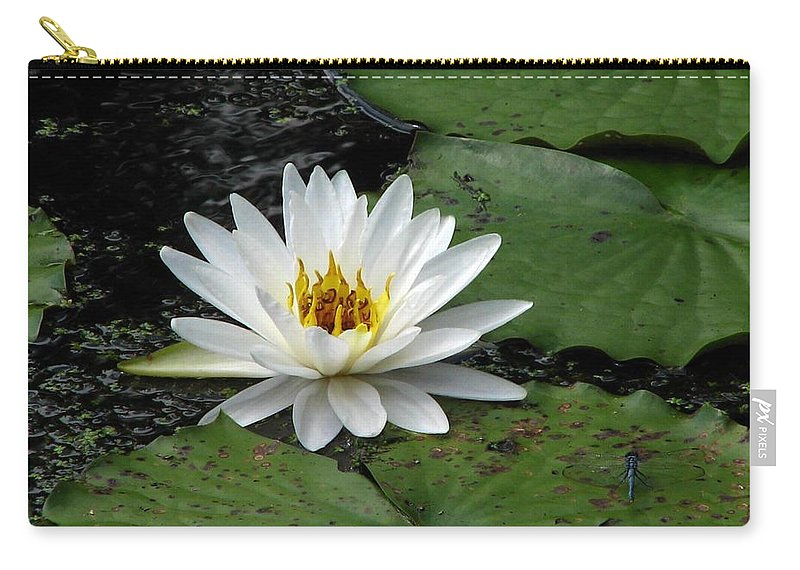 Water Lily Carry-all Pouch featuring the photograph Water Lily 2 by J M Farris Photography