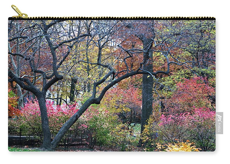 Forest Carry-all Pouch featuring the photograph Watercolor Forest by Lorraine Devon Wilke