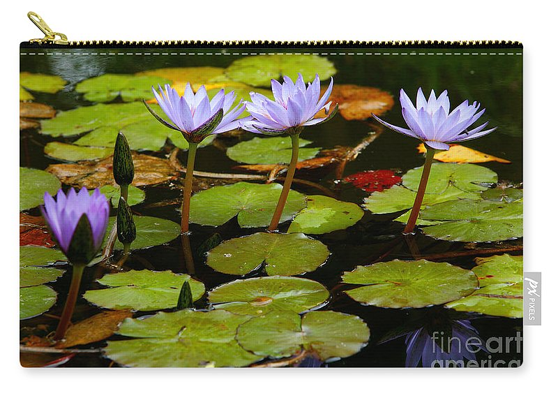 Pond Carry-all Pouch featuring the photograph Waterlilies by Gaspar Avila