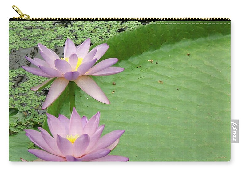 Waterlily Carry-all Pouch featuring the photograph Waterlilies by Heather Lennox