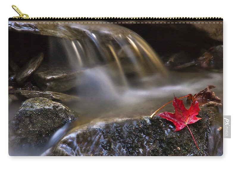 Fall Carry-all Pouch featuring the photograph Watermark by Evelina Kremsdorf