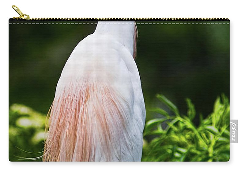 Cattle Egret Carry-all Pouch featuring the photograph Wearing Spring Colors by Christopher Holmes