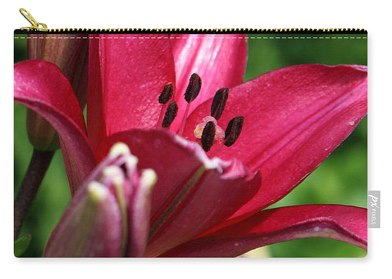Lilly Carry-all Pouch featuring the photograph Welcoming by Amanda Barcon