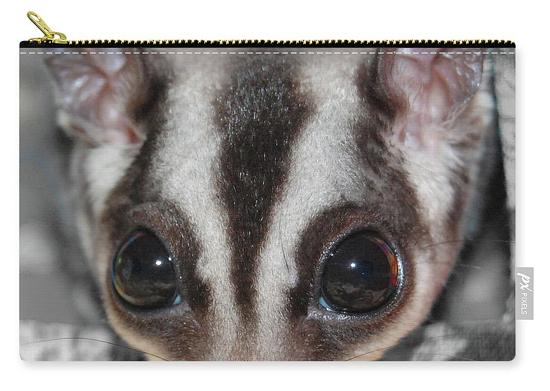 Sugar Glider Carry-all Pouch featuring the digital art Well Hello There by DigiArt Diaries by Vicky B Fuller