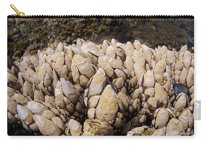 Barnacles Carry-all Pouch featuring the photograph West Coast Barnacles by Mel Manning