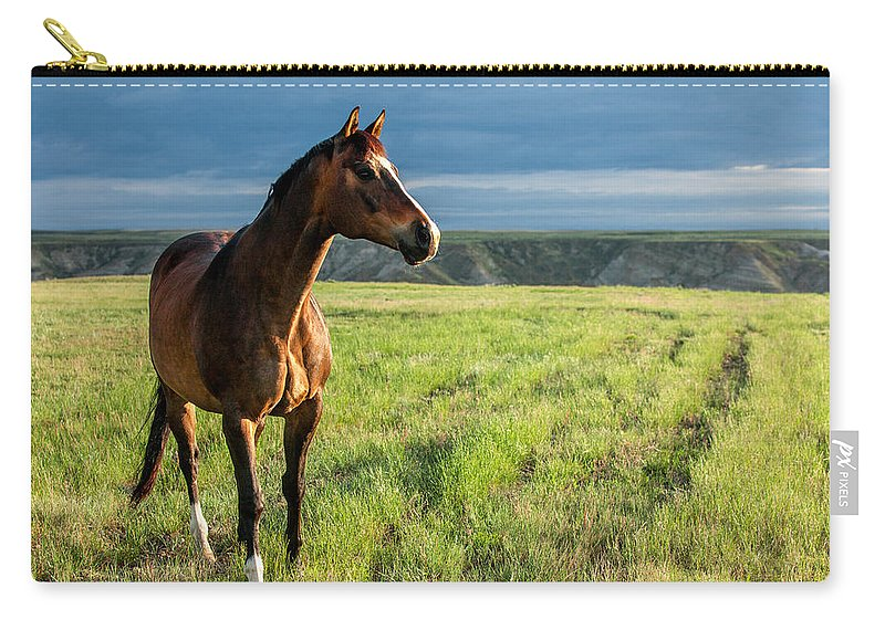 Prairie Carry-all Pouch featuring the photograph Western Stallion by Todd Klassy