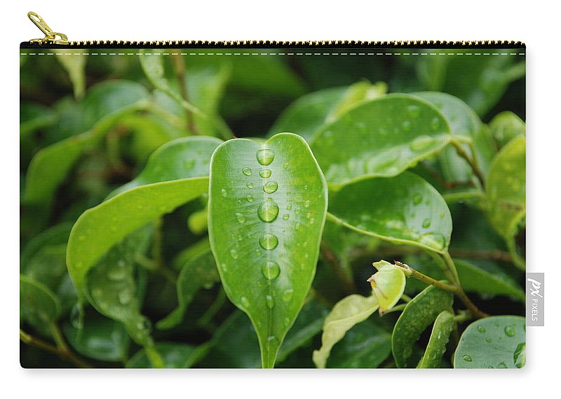 Macro Carry-all Pouch featuring the photograph Wet Bushes by Rob Hans