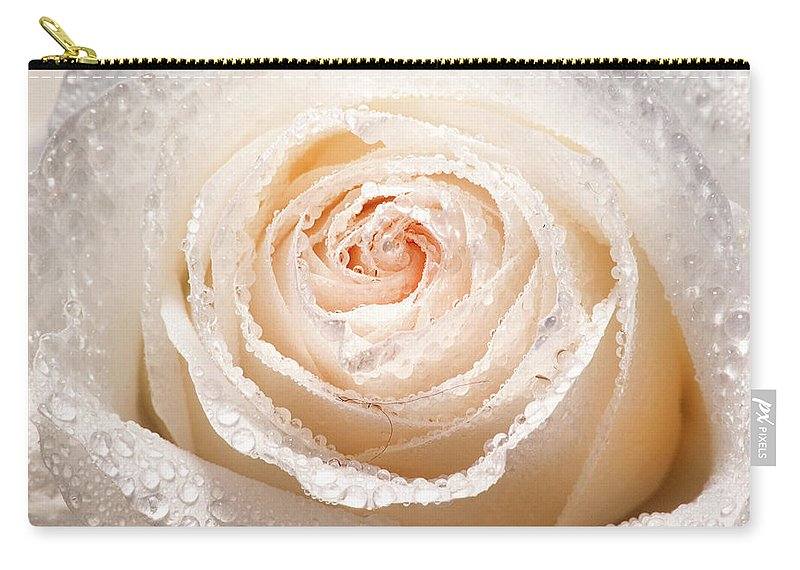 Rose Carry-all Pouch featuring the photograph Wet White Rose by Don Johnson